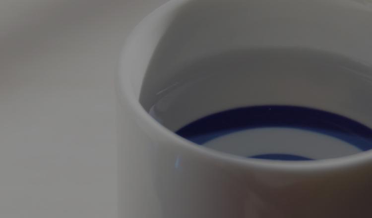 酒燗器&燗どうこ